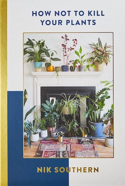 Plant care tips for those who need them!