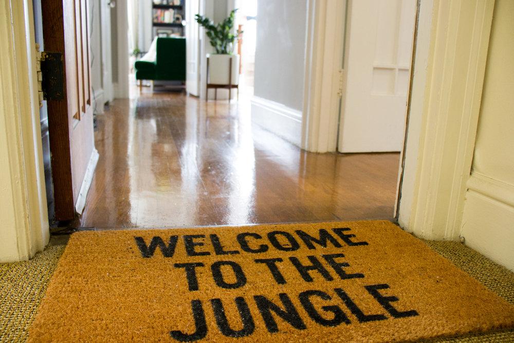 w-j-jungle-welcome.jpg