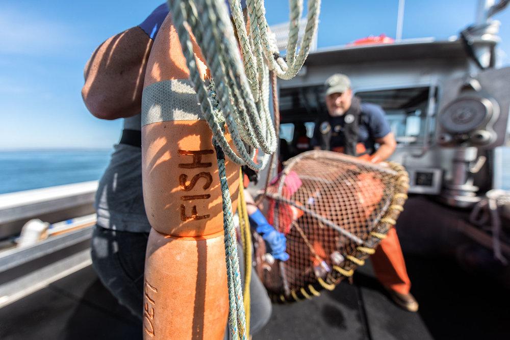 Austin Trigg Washington Fish and Wildlife
