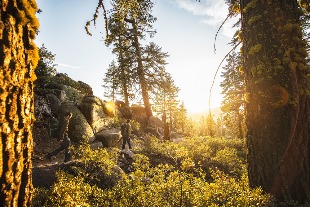 austin-trigg-wing-suit-base-jump-fly-yosemite-lifestyle-california-adventure-thrill-seeking-sunset-forest-sun-slare.jpg