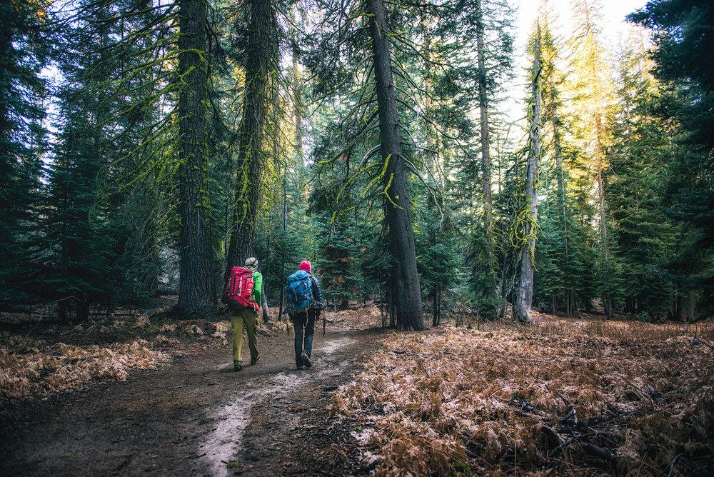 austin-trigg-yosemite-national-park-hiking-forest-taft-point-adventure.jpg