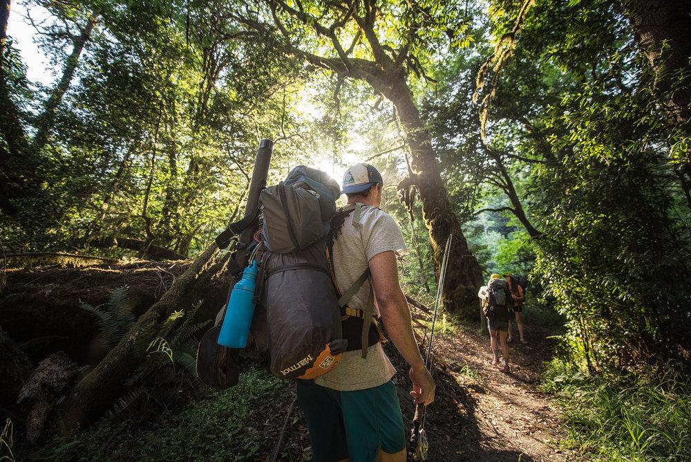 austin-trigg-redwood-water-bottle-hike-backpack-adventure-california-tall-tree-grove-forest.jpg
