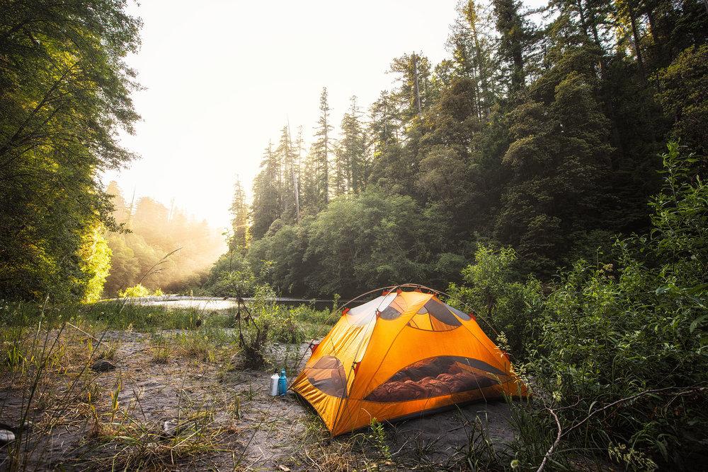 austin-trigg-redwood-water-bottle-sunset-tent-california-tall-trees-grove-camping-hike-adventure.jpg