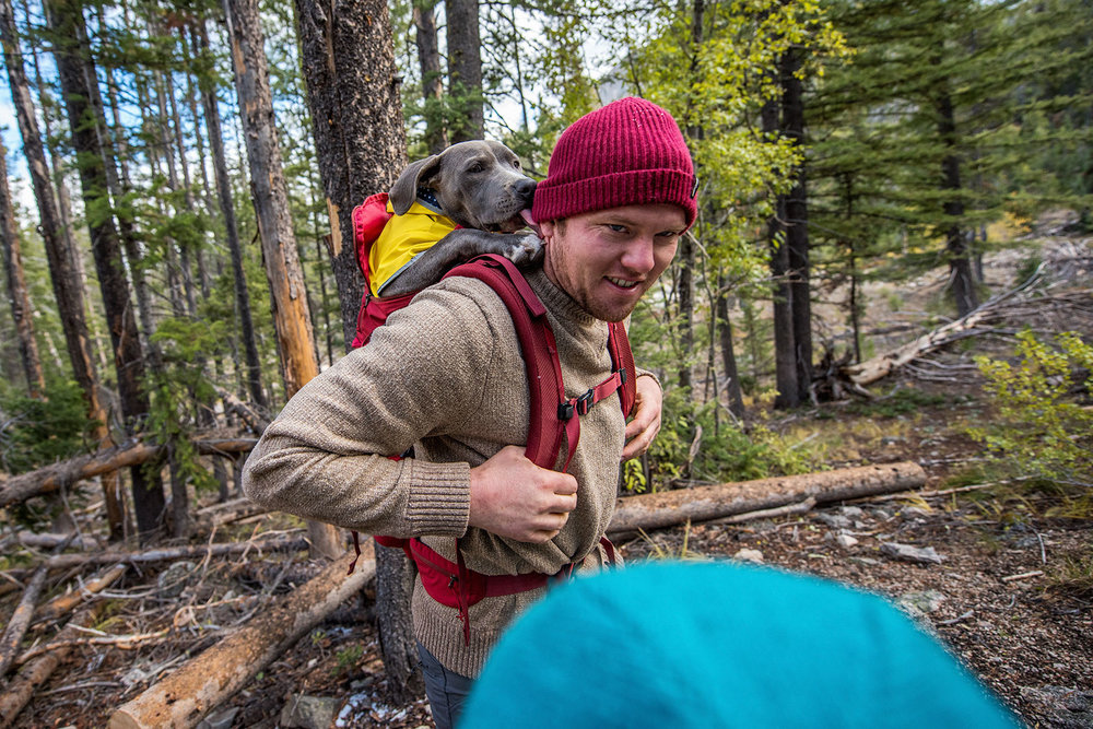 austin-trigg-patagonia-sawtooth-hiking-advenure-wilderness-forest-idaho-outside-lifestyle-day-fall-weather-mountains-dog-lick-ear-trees.jpg