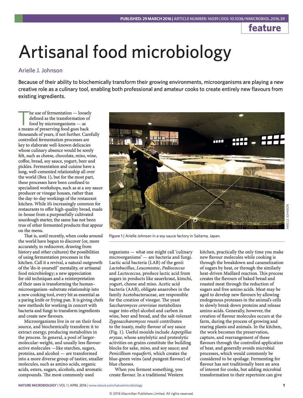 Artisanal Food Microbiology - Nature Microbiology, 2016read more