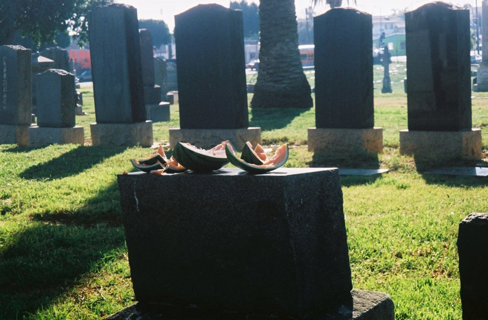 People visit the cemetery to commune with deceased loved ones, sometimes leaving what seems to be their favorite foods in life at their graves as offerings in death. How many of these gifts intended for the dead end up in the bellies of the coyotes who also dwell here?