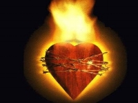 Did not our hearts burn  8/5/2018