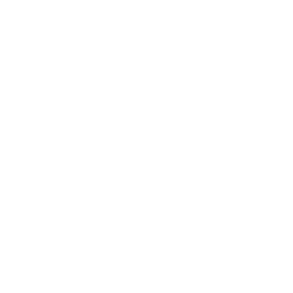 Panorama-Logo-White.png