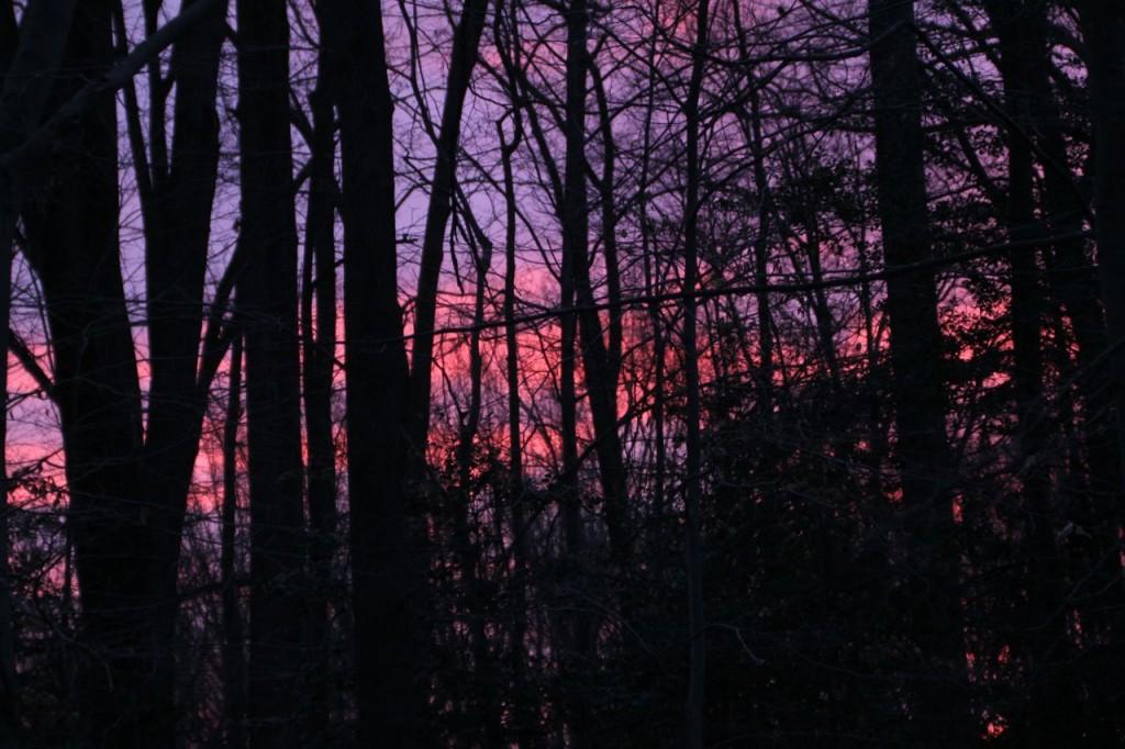 Mid-winter sunrise.