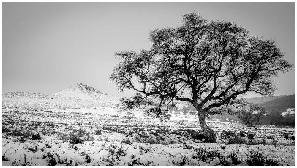 Winter On Hawnby Moor