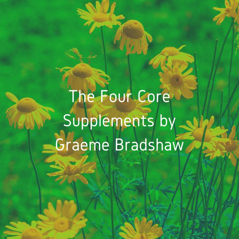 The Four Core Supplements.png