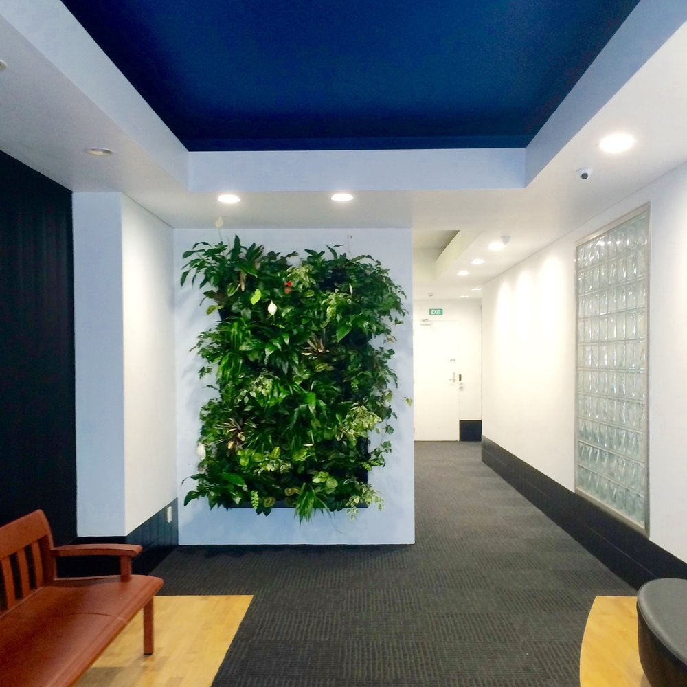 VOYAGER - A crisp new office refresh...