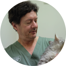 DR. MARK SAYER  BVSc  VETERINARIAN/OWNER  Mark graduated from Sydney University in 1983 and worked at various mixed practices on the outskirts of Sydney until opening the Railway Row Veterinary Clinic with Karen in 1986. He's been a part of the furniture ever since.