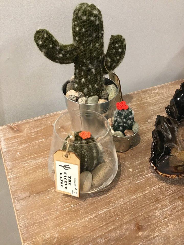Cactus! from Cassie at The Cactus Range!