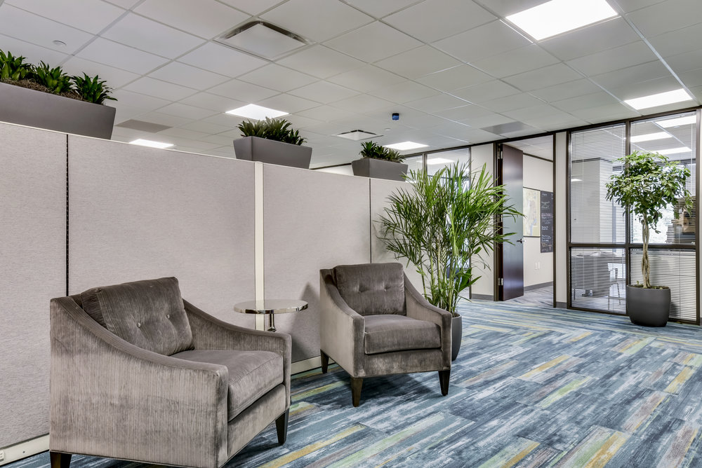 Commerical Office Interior Design with Gray Chairs
