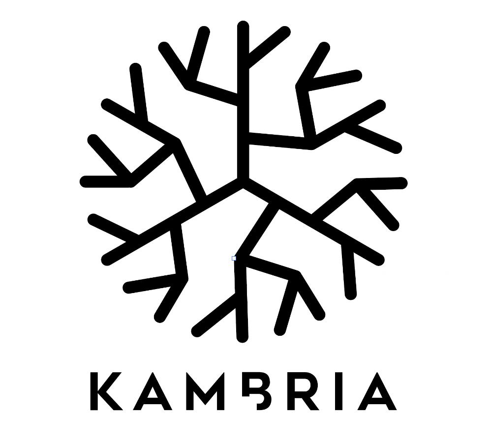 Kambria-logo-white-bg.png