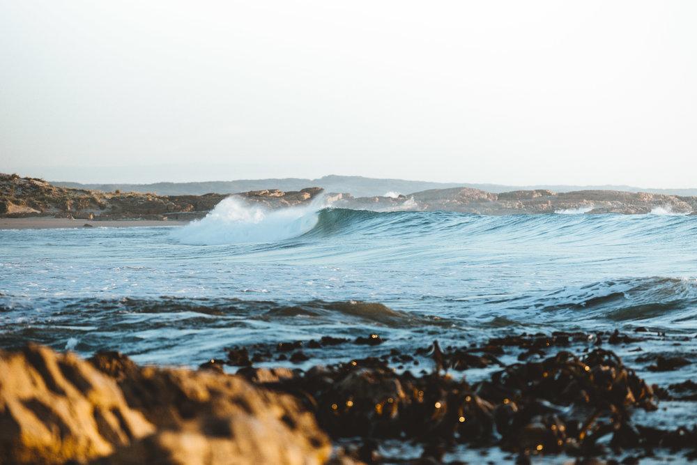 West Coast Wave.jpg