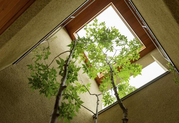 Jard n zen for Jardin zen en casa