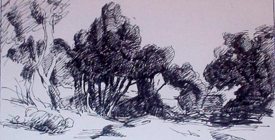 Thomas teckning Big Draw01