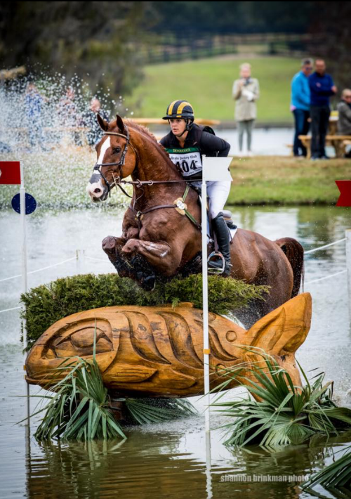 Foreign Affair -  Competing CIC***