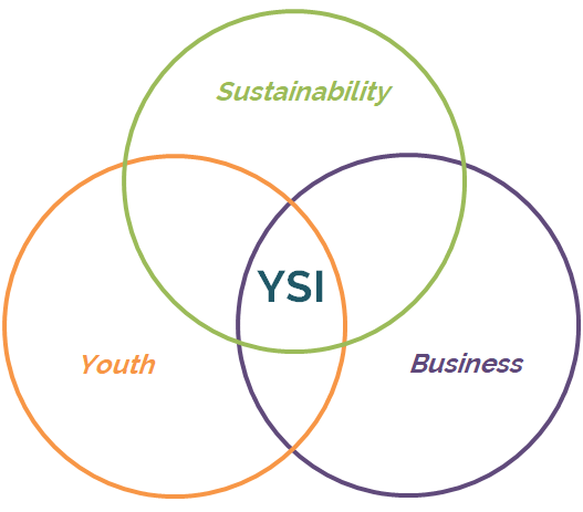 YSI Core.png
