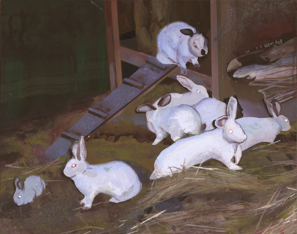 Rabbit Wumpus