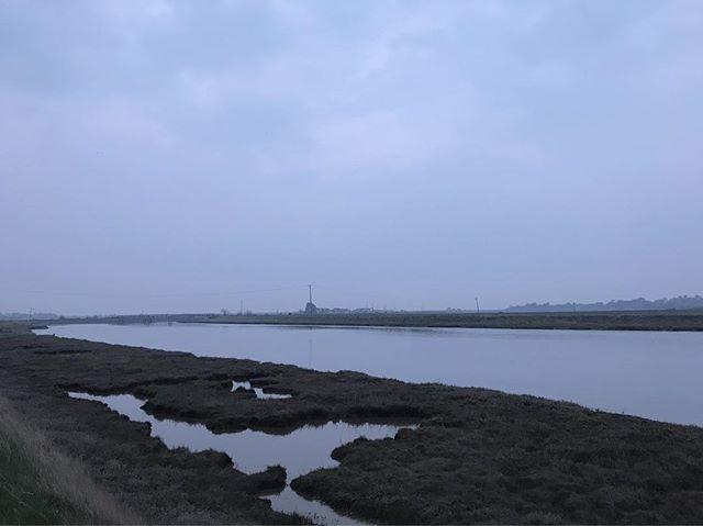 Mid week evening walks along the river.