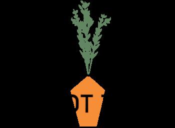 CT_Logo_OnWhiteTransparent.png