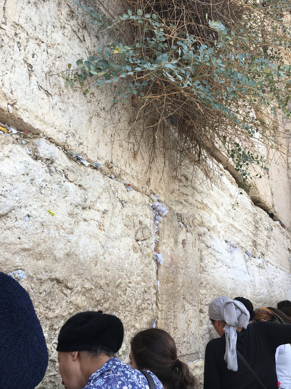 Nishmas @the Kotel - We will travel from the center of the earth (the Kotel)  to the center of our hearts (our relationship with H-shem)