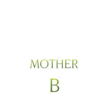 Mother B Green Cleaning