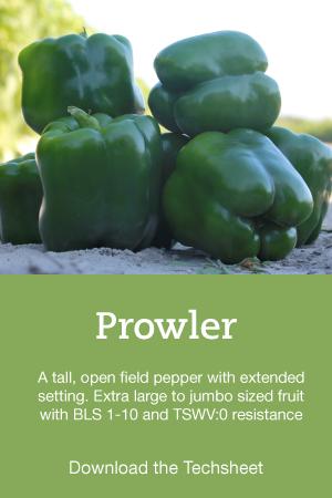 Pepper-Hero-Prowler.png