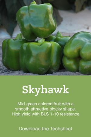 Pepper-Hero-Skyhawk.png