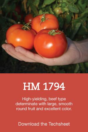HM-1794-Hero.png