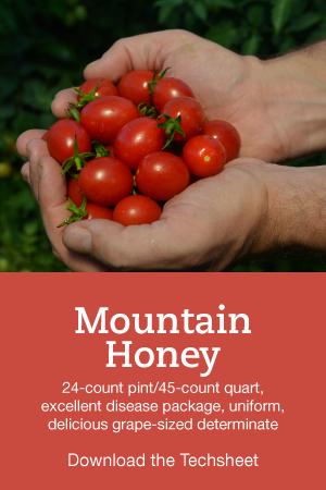 Mountain-Honey-Hero.png