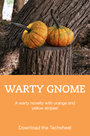 warty-gnome-1.png