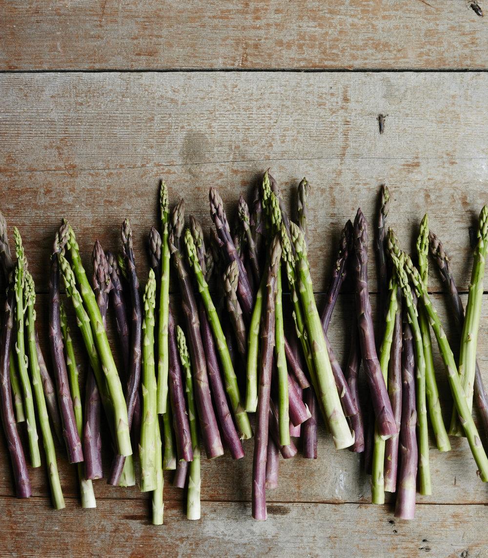 Shine_asparagus1744.jpg