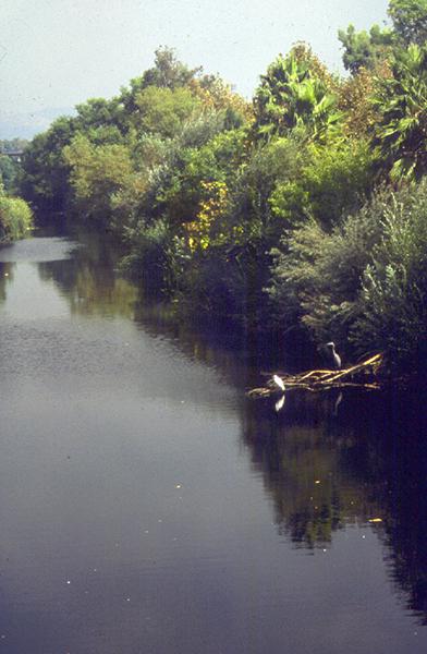 Sepulveda Basin_2.jpg