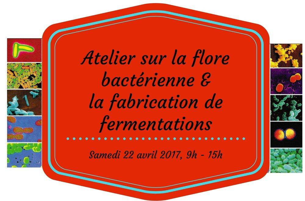 seulement entête - 22 avril 2017 - Atelier sur la flore bacterienne et fabrication de fermentations (1).jpg