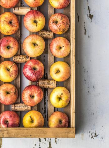 pommes et bouchons de liege.jpg