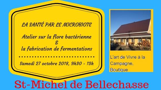 st michel de bellechasse- 27octobre 2018 - Atelier sur la flore bacterienne et fabrication de fermentations