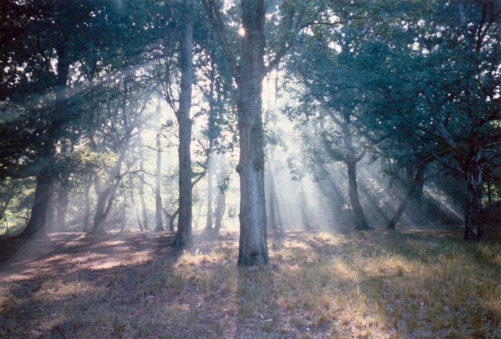 FRAGMENTS: Streatham Common, circa 1997