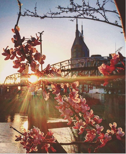 @nashvilletn - If you're into unique angles and stunning colors, see Nashville through a different lens via @nashvilletn