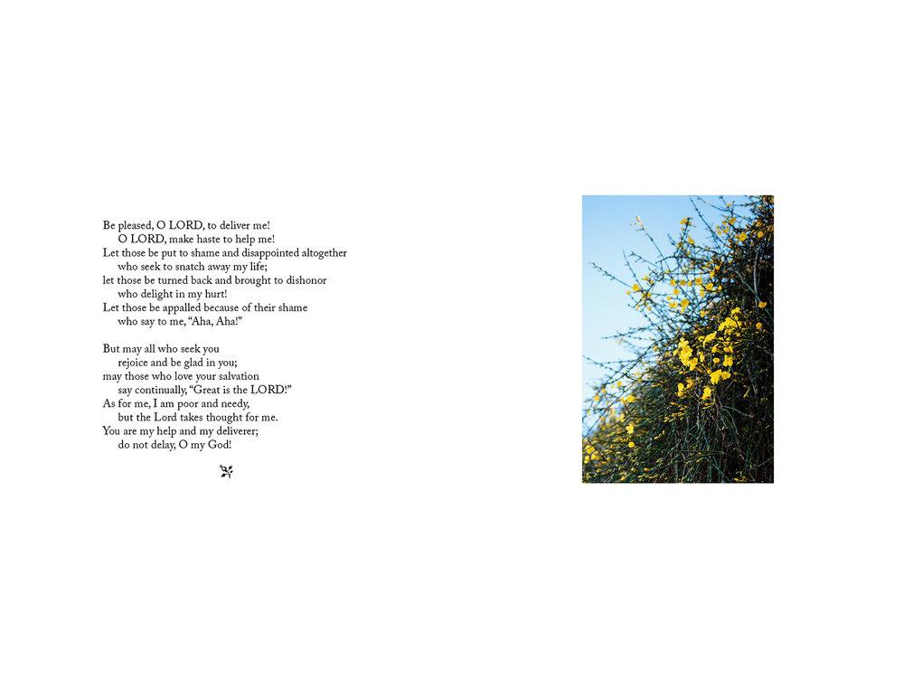 seasons-16.jpg
