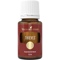 thieves3.jpg