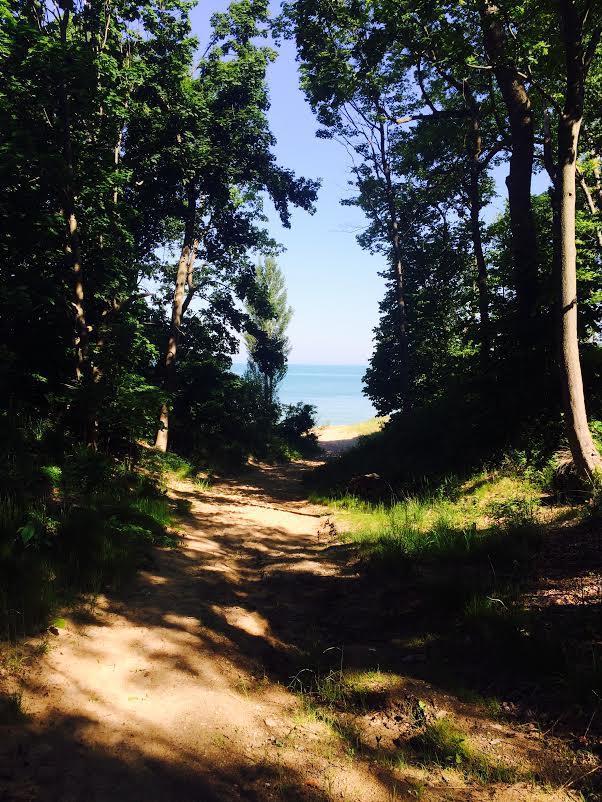 aqua Turner Shores Lakeside MI (3).jpg