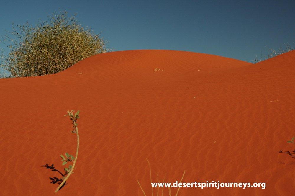 Dune crest Simpson.jpg