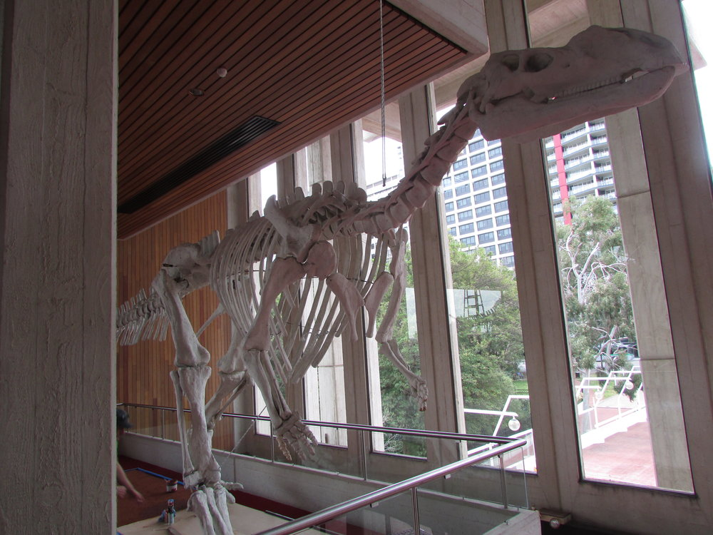 Perth Concert Hall Dinosaur Installation