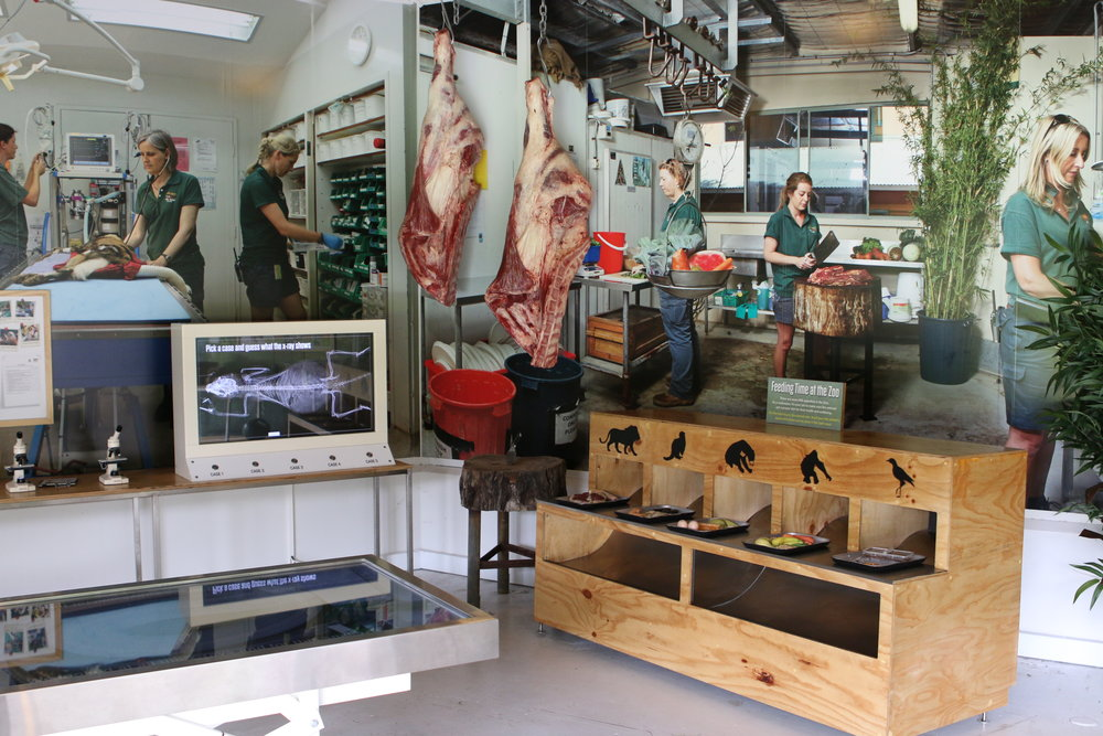 EDUCATIONAL AND INTERACTIVE SPACES