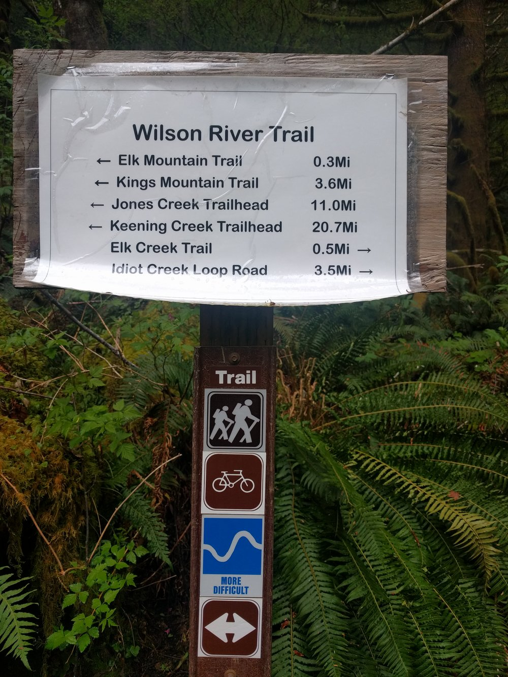 Woo hoo! You're almost to the trailhead for the Elk Creek Trail!