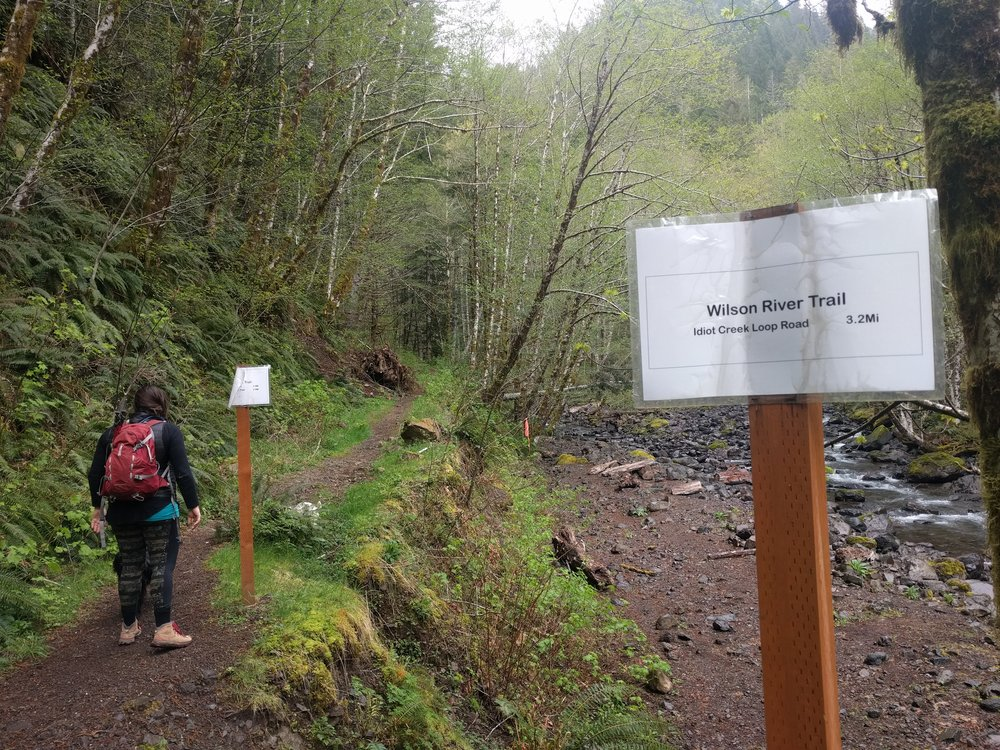 The sign in the foreground marks the Wilson River Trail, continue to the second one.